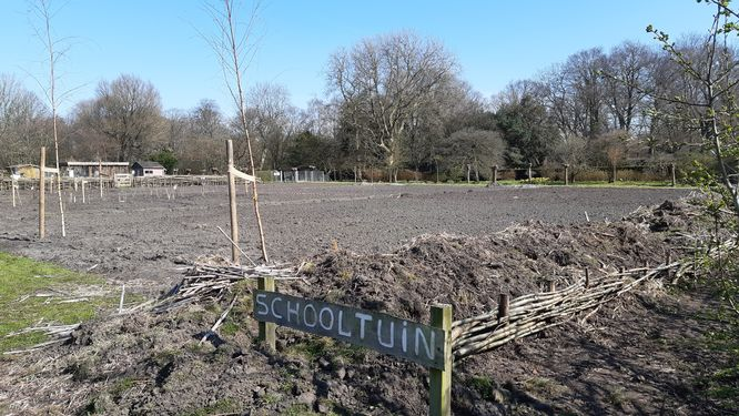 terrein voor moerasvoedselbos