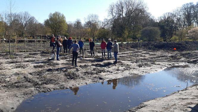 moerasvoedselbos in aanleg